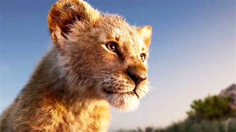 Box Office: Lion King gets outstanding weekend - Rediff